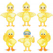 Six ducklings — Stock Vector