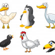 Stock Vector: Different kinds of birds
