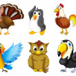 Stock Vector: Different kind of birds