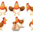Stock Vector: Group of fat hens