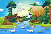 A group of ducks at the river in the forest — Stock Vector