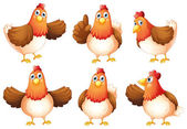 Six fat chickens — Stock Vector
