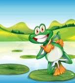 A happy frog standing above the waterlily — Stock Vector