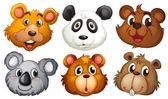 Six heads of bears — Stock Vector