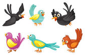Six colorful birds — Stock Vector