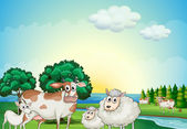 Sheeps, cow and goat near the flowing river — Stock Vector