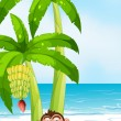 A monkey resting under the banana plant at the beach — Stock Vector