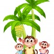 Stock Vector: Three monkeys near bananplants