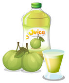 Guava juice — Stock Vector