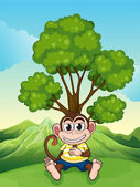 A monkey frowning under the tree at the hilltop — Stock Vector
