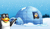 Penguins and the igloo — Stock Vector