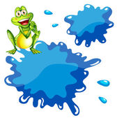 A green frog and an empty blue template — Stock Vector