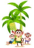 Three monkeys near the banana plants — Stock Vector