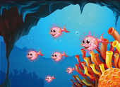Puffer fishes inside the sea cave — Stock Vector