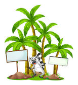 A lemur in the middle of the empty signboards in front of the pa — Stock Vector