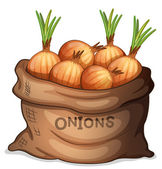 A sack of onion — Stockvector