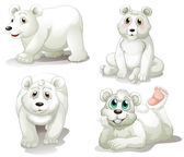 Four adorable polar bears — Stock Vector