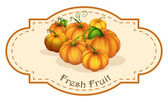 A fresh fruit label with squash — Stock Vector