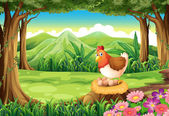 A hen laying eggs at the forest — Stock Vector
