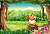 A chicken at the forest — Stock Vector