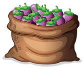A sack of eggplants — Stock Vector