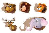 Five stuffed heads of animals — Stock Vector