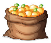 A sack of oranges — Stock Vector
