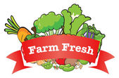A farm fresh label with fresh vegetables — Stock Vector