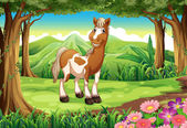 A forest with a smiling horse — Stock Vector