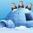 Three penguins above the igloo — Vector de stock
