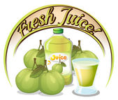 Fresh juice label with guavas — Stock Vector