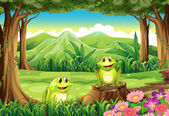 Two frogs at the forest — Stock Vector