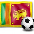 Flag of SriLankwith soccer ball — Stock Vector #40935619