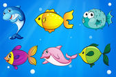 Six different fishes under the sea — Stock Vector