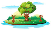 An island with three playful rabbits — Stock Vector