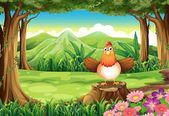 A hen above the stump at the forest — Stock Vector