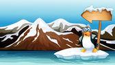 A penguin above the iceberg with an arrowboard — Stock Vector