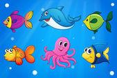 Sea creatures under the sea — Stock Vector
