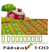 A natural label and a farm — Stock Vector