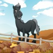 Stock Vector: A smiling gray horse near the wooden fence
