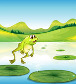 A pond with a frog jumping — Stock Vector