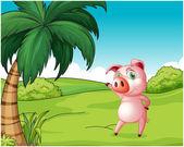 A pig near the coconut tree — Vetor de Stock