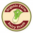 An organic farm and dairy fresh logo with a cabbage — Stock Vector