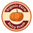 An organic farm and dairy fresh label with a pumpkin — Stock Vector