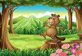 A playful brown beaver above the stump — Stock Vector
