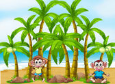 A beach with coconut trees and playful monkeys — Stock Vector