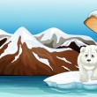 A polar bear above the iceberg with a signboard — Vector de stock