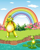 A turtle and a frog at the pond with a rainbow in the sky — Stock Vector