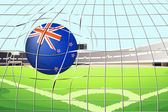 A ball hitting a goal with the New Zealand flag — Stock Vector