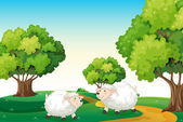 Two white sheeps at the hilltop — Vecteur